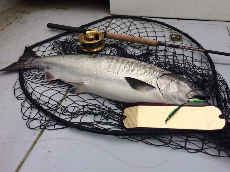 Rocky point charters fishing reports rocky point charters for Rocky point fishing charters
